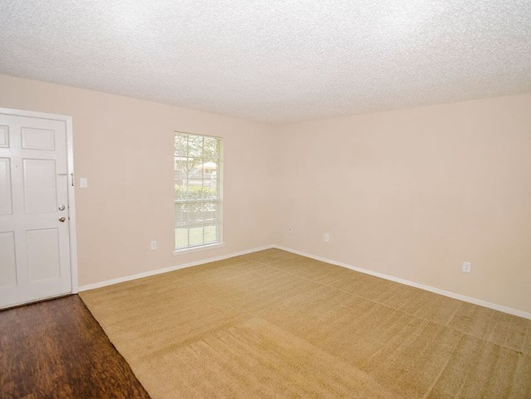 Baton Rouge Apartment Living Room
