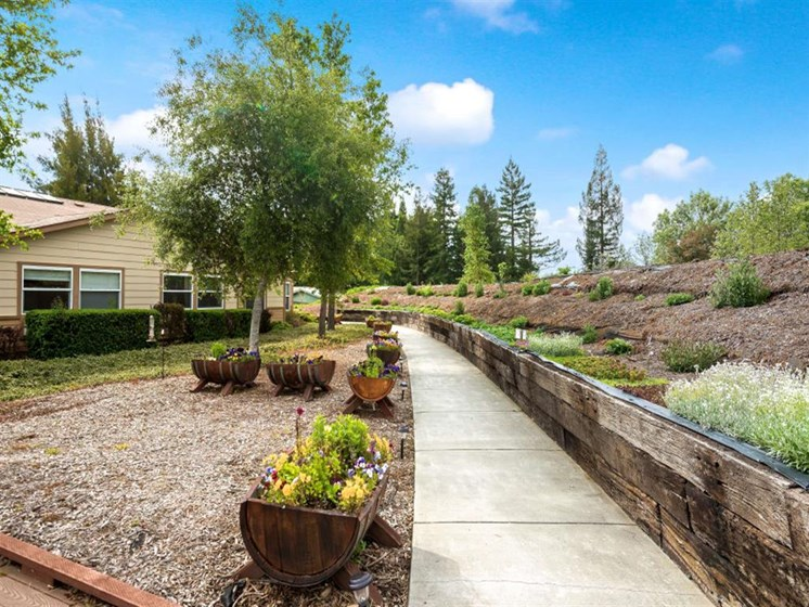 Secluded path with planters at Healdsburg, A Pacifica Senior Living Community, California