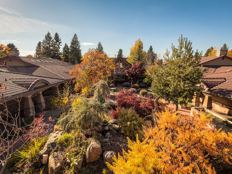 Beautiful Mature Tree Combinationsat Courtyard at Pacifica Senior LIving, Coeur d'Alene, Coeur d Alene, ID, 83814