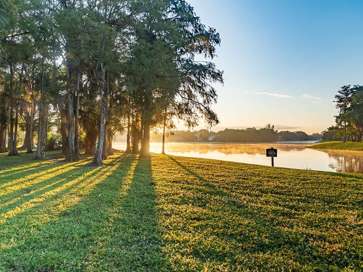 Lake View in morning sun at Pacifica Senior Living Forest Trace, Florida
