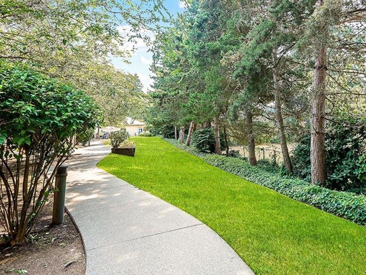 Beautiful way With Lush Area at Pacifica Senior Living Lynnwood, Washington