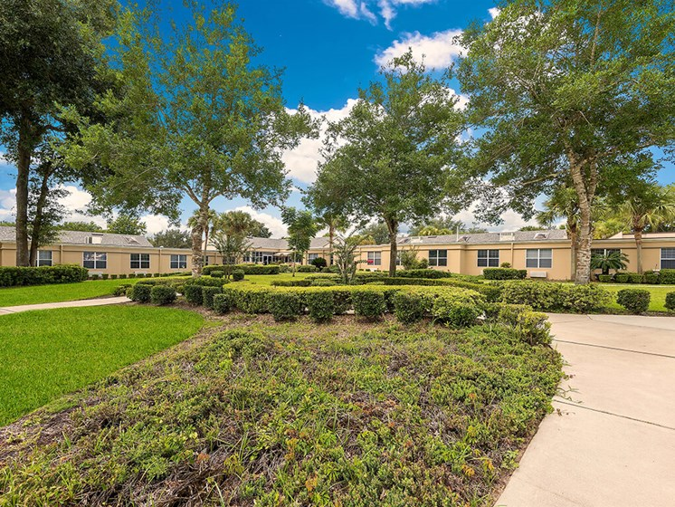 Tree-lined Landscaped grounds at Pacifica Senior Living Ocala
