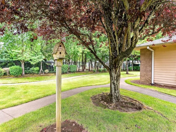 Lush Landscaping at Pacifica Senior Living Portland, Portland, OR, 97233