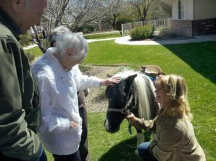 Equine Therapy at Pacifica Senior Living Tucson