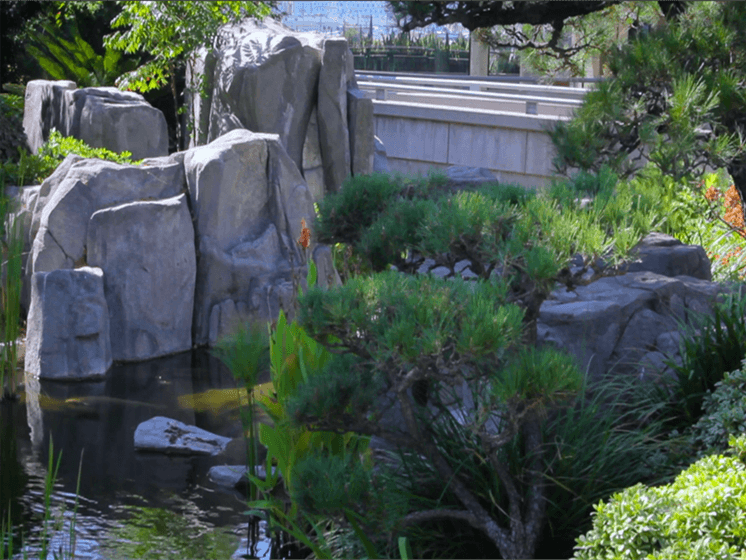 Gardens and pond Sakura Gardens