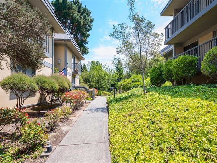 Beautiful walking paths at apartments in Monterey, California