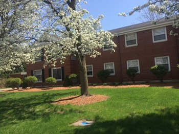1542 Michigan Street NE 2-3 Beds Apartment for Rent Photo Gallery 1