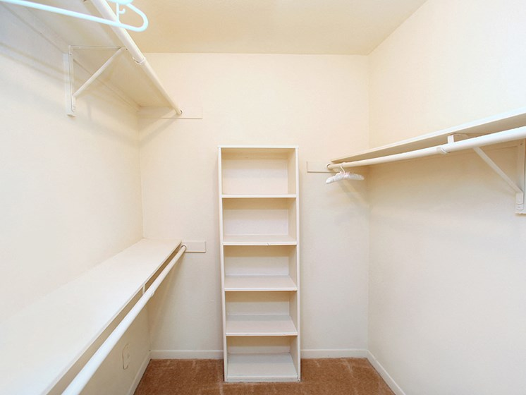 walk-in closet in apartment