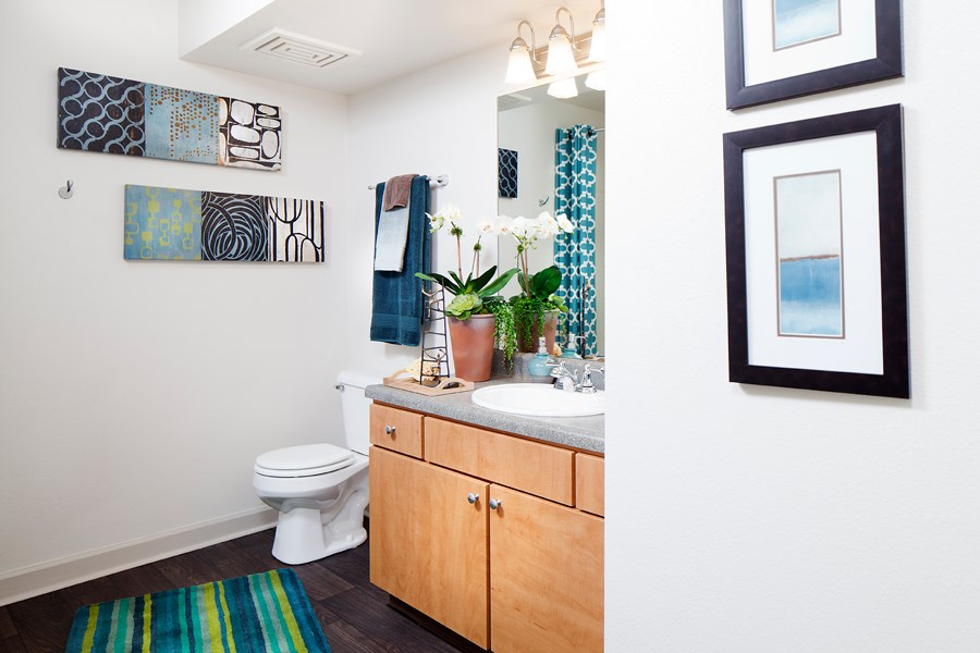 Ardenne Apartments Bathroom with light brown vanity, grey countertop, white sink and green and blue striped rug