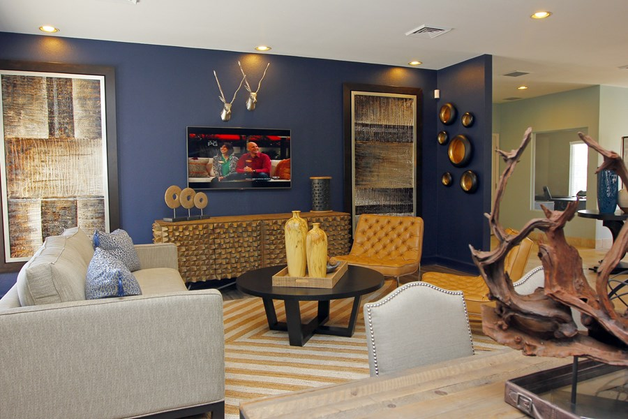 Ardenne Apartments Clubhouse with navy walls, a flat screen tv and grey couch