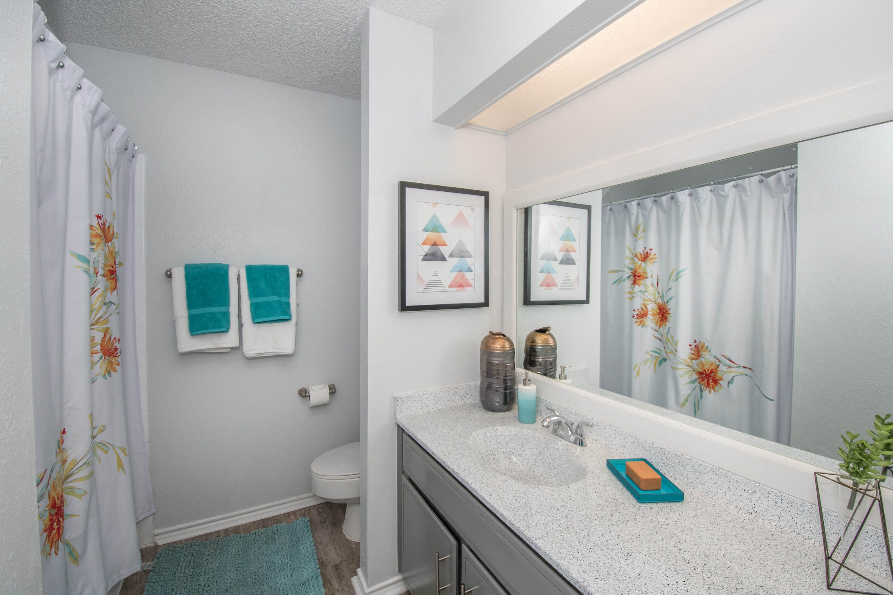 bathroom northwest san antonio apartments