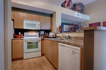 3040 SW 119 Ave 1-2 Beds Apartment for Rent Photo Gallery 1