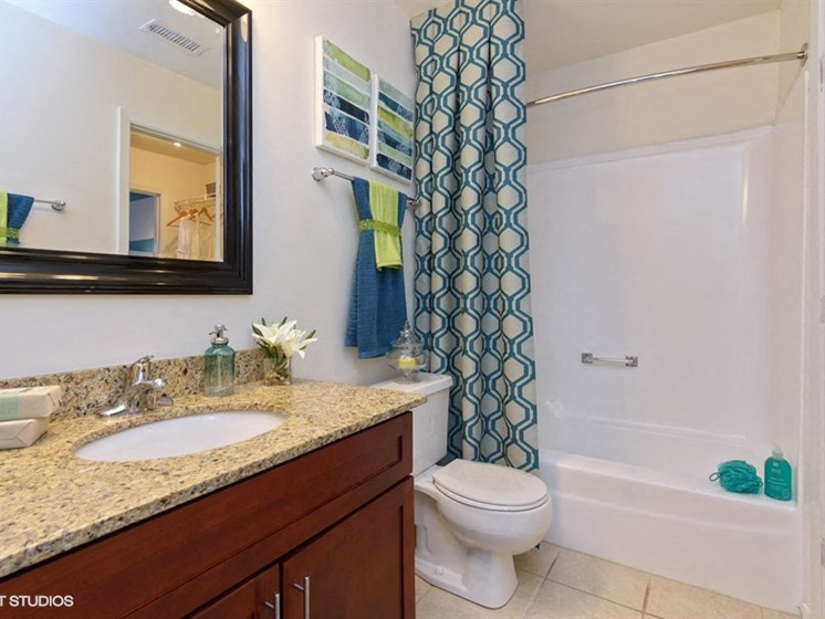 Large bathroom with a tub at Brook Run in Arlington Heights, IL