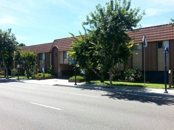 11717 Lakewood Boulevard 1-2 Beds Apartment for Rent Photo Gallery 1