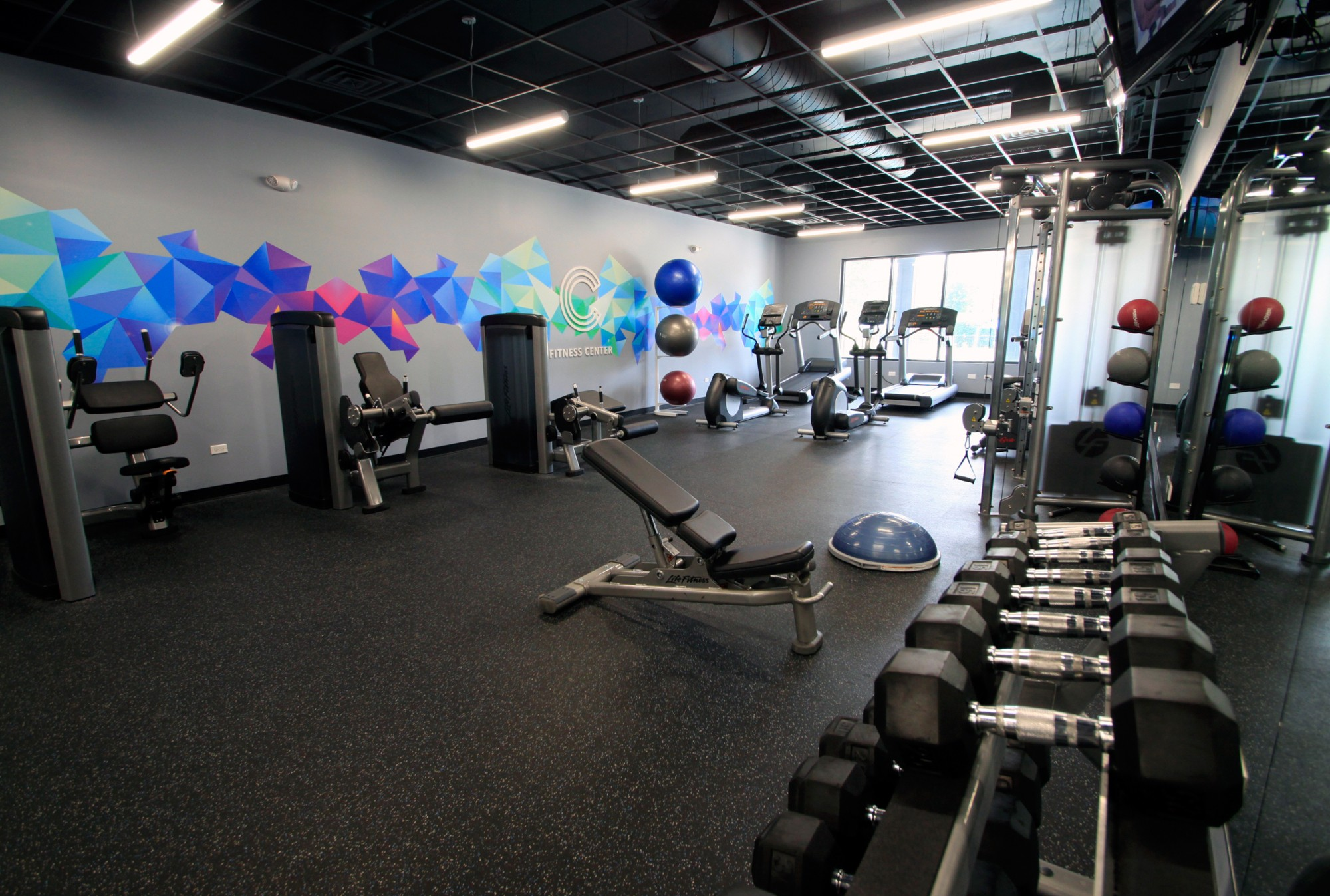 Free Weights at The Clayson, Palatine, Illinois