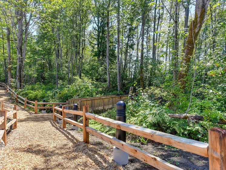 Walking Trail with Wood Chip Ground, Trees, and Wooden Fence