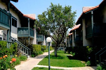 1691 Mesa Drive 1-2 Beds Apartment for Rent Photo Gallery 1