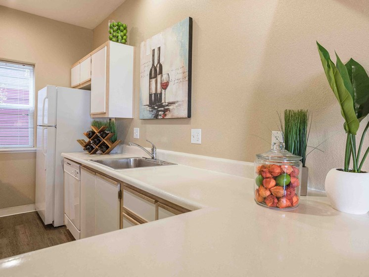 Goose Hollow Townhomes | Kitchen