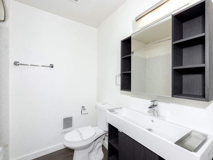 Holgate Lofts Apartments | Bathroom