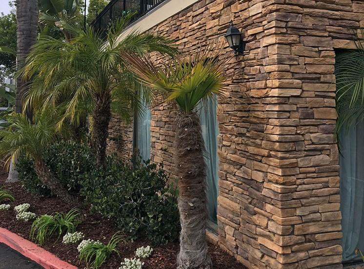 Beautiful landscape outside at Alta Vista Senior Living, California, 92083