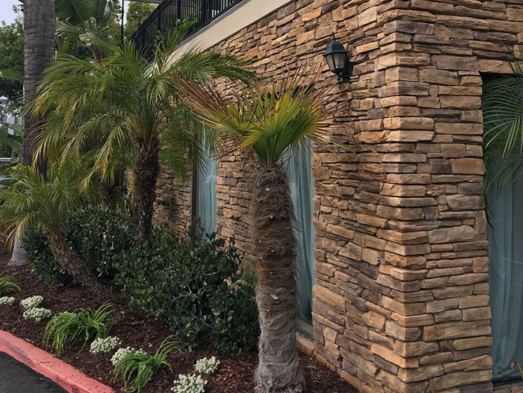 Beautiful landscape outside at Alta Vista Senior Living, California, 92083