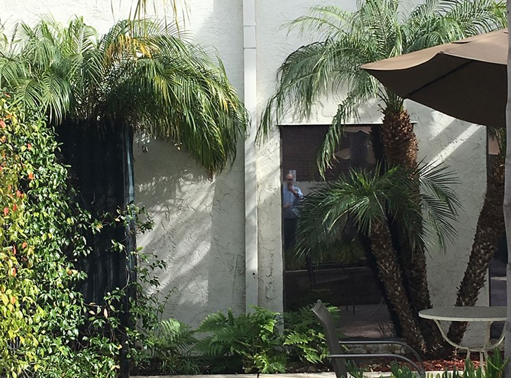 Relaxing Outdoor Lounge Area at Alta Vista Senior Living, Vista, 92083