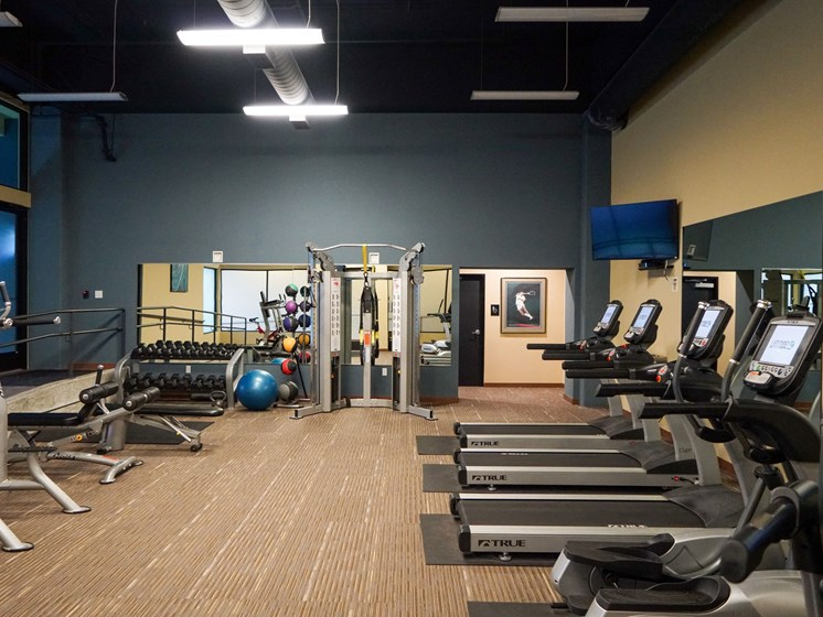 Fitness Center With Modern Equipment at Latitude 47, University Place
