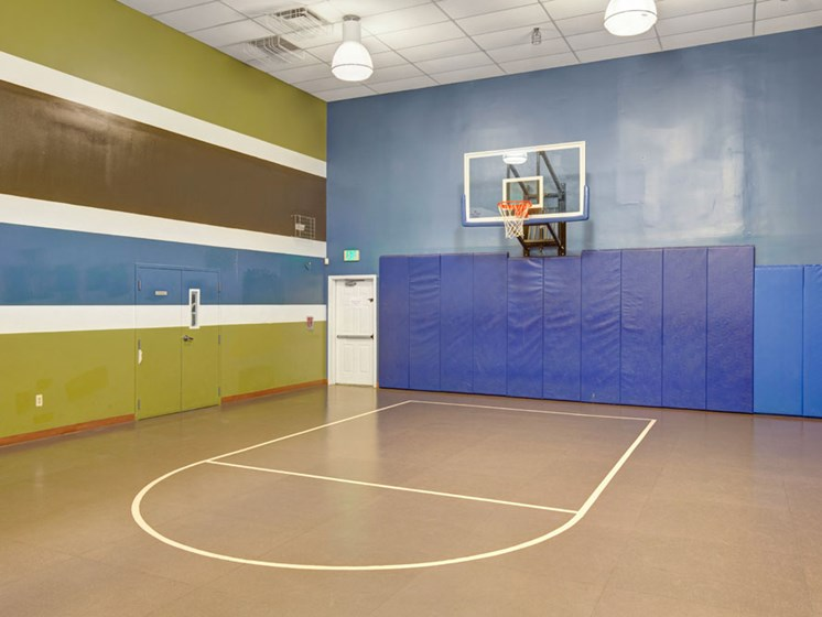 Fitness center basketball court with padded walls and basketball hoop