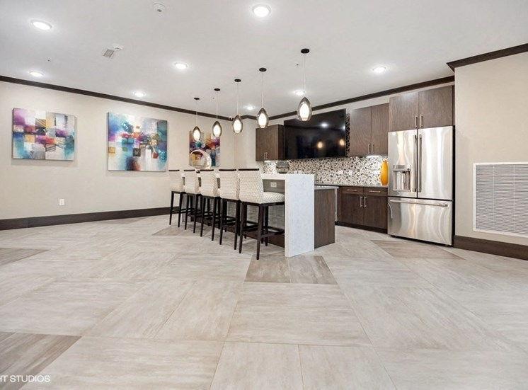 Community Lounge with Kitchen and Dining Space at the Monarch Luxury Apartments in Des Plaines