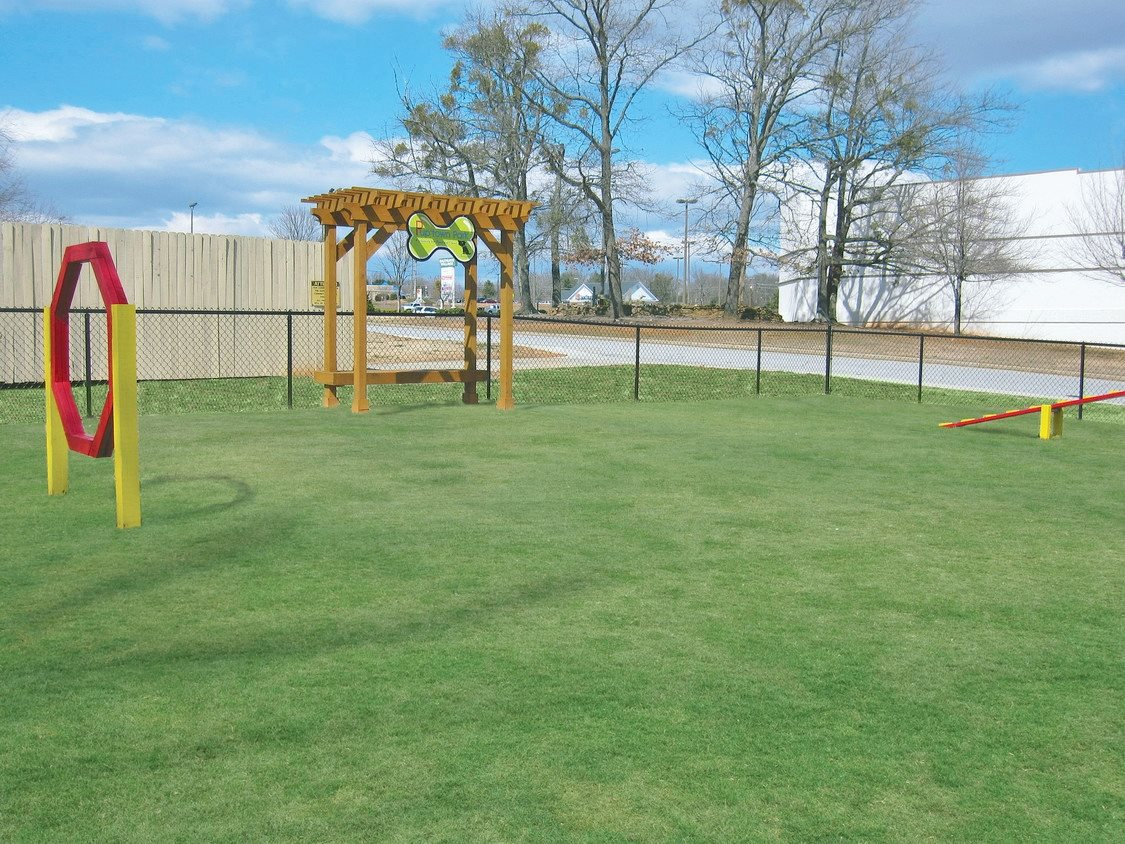 Leash free bark park at Chimneys of Greenville apartment homes in Taylors, SC