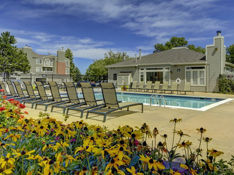 outdoor lounging area next to pool in lakewood colorado