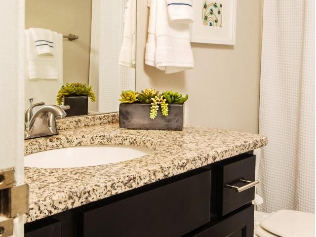 2460 Peachtree Bathroom
