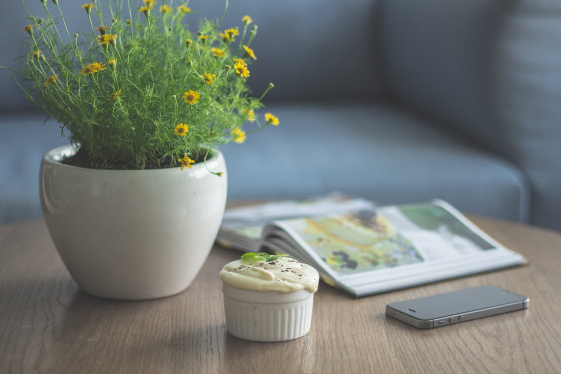Plant, cupcacke, cell phone and magazine on a coffee table