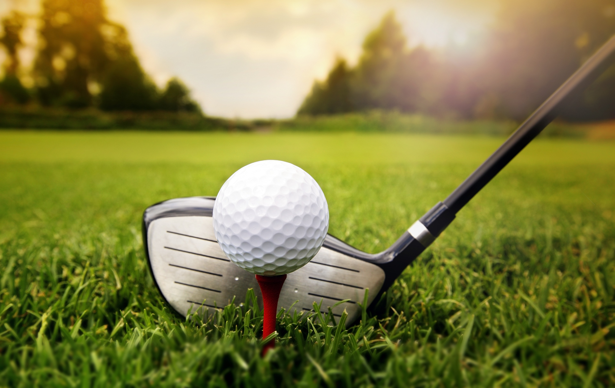 Sports Golfing