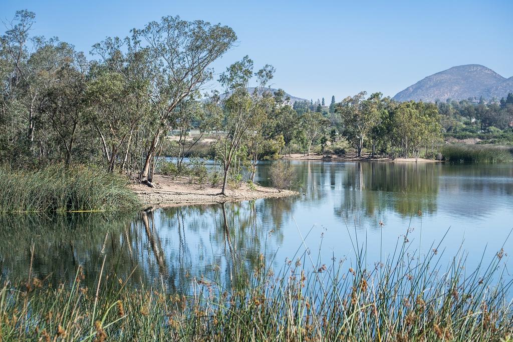 Lake Murrray