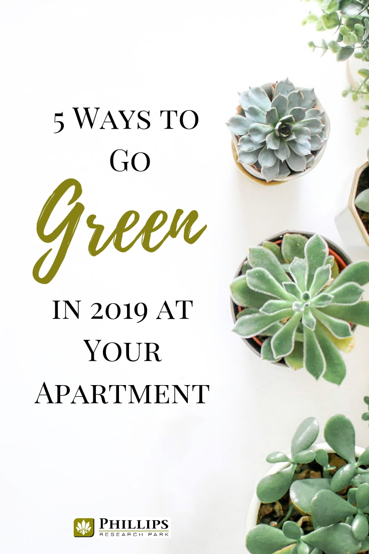 5 Ways to Go Green in Your Durham Apartment   Phillips Research Park