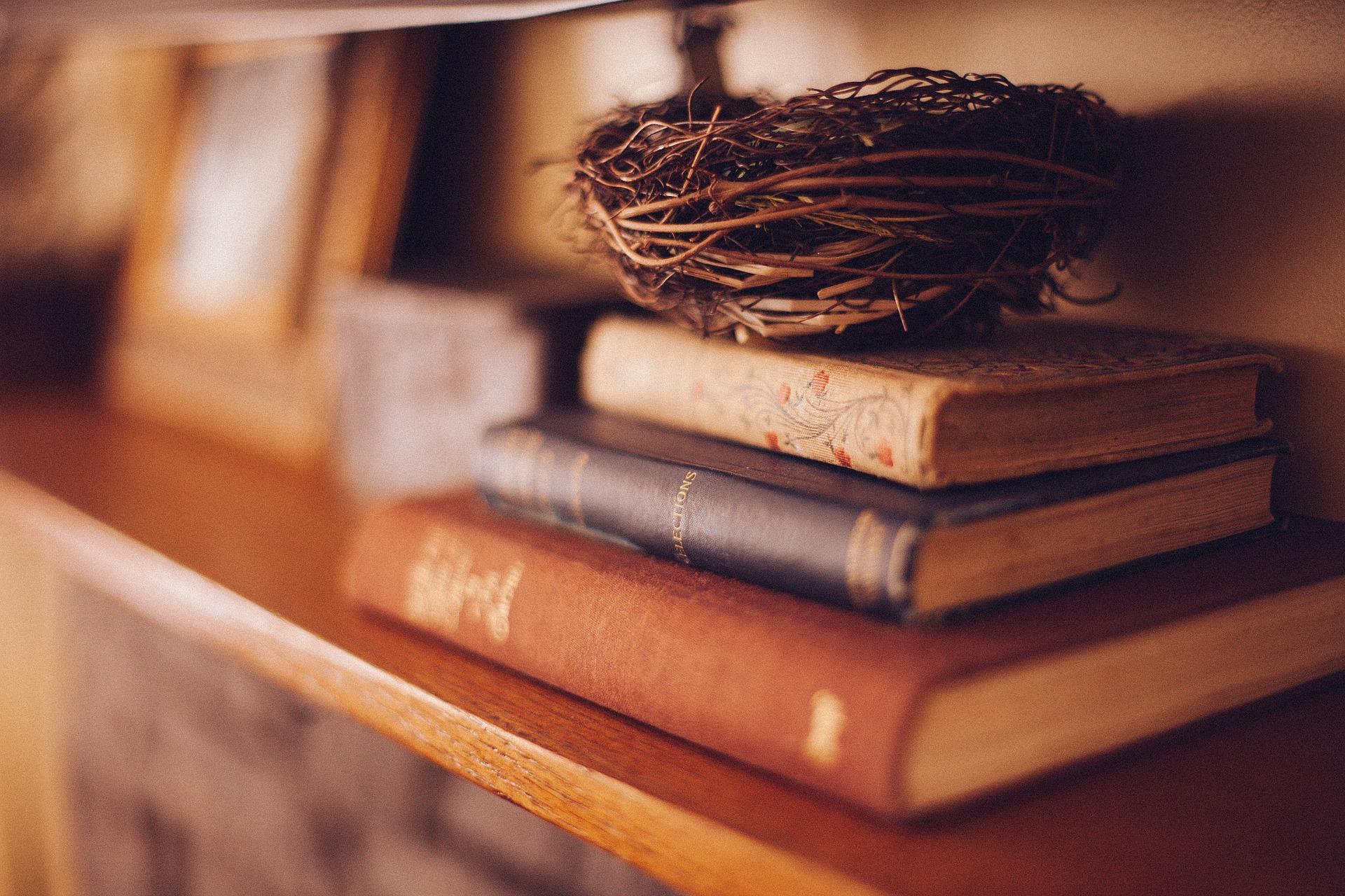 nest on a shelf
