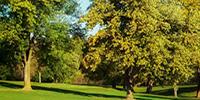 http://www.rentcafe.com/dmslivecafe/UploadedImages/812e1610-2790-4606-a96c-ace451ccac0e.jpg