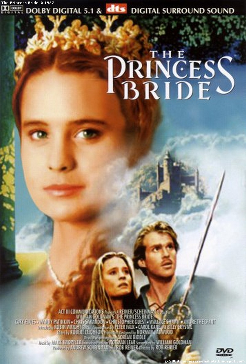 the princess bride essay term paper help the princess bride essay