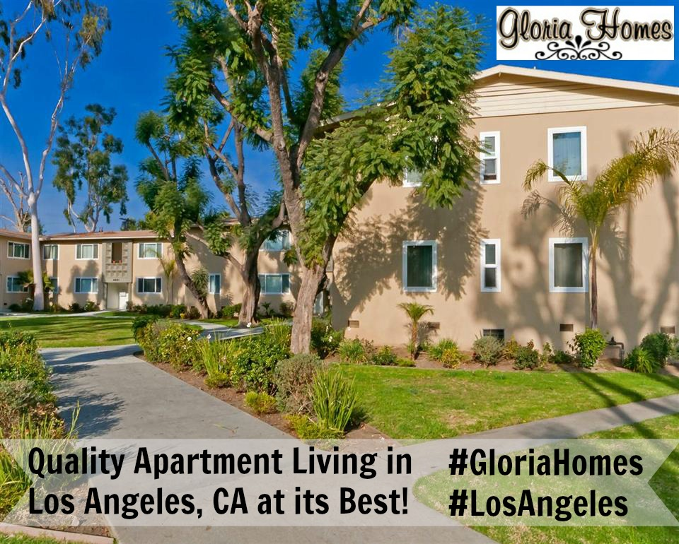 gloria homes apartments for rent in los angeles ca gloria homes