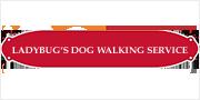 Ladybugs Dogwalking