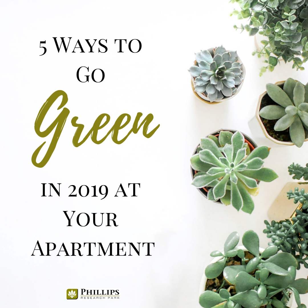 5 Way to Go Green in Your Durham Apartment   Phillips Research Park